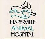 Naperville Animal Hospital