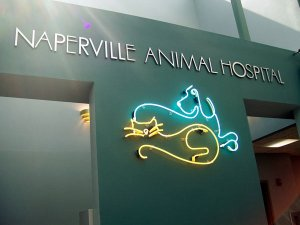 Naperville Animal Hospital pic